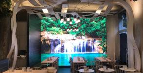 Nui Jungle Cafè Milano